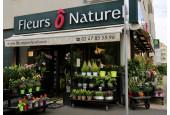 Fleurs Ô Naturel Rouen